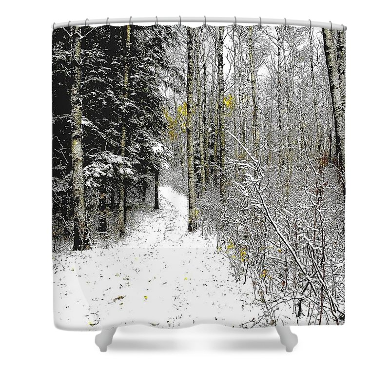 Winter Shower Curtain featuring the photograph First Snowfall by Nelson Strong
