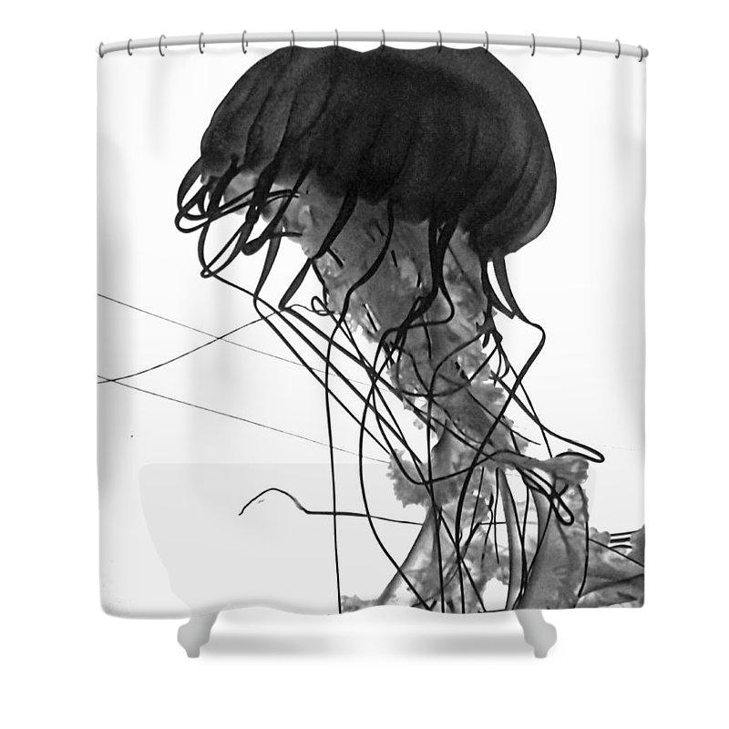 Jellyfish Shower Curtain featuring the photograph Fish 26 by Ben Yassa