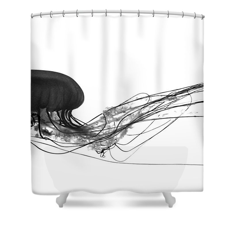 Jellyfish Shower Curtain featuring the photograph Fish 28 by Ben Yassa