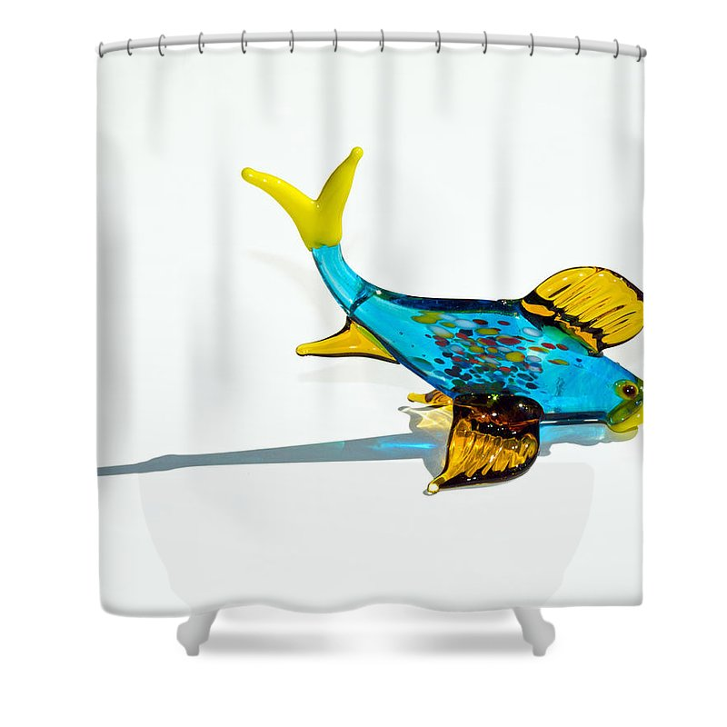 Tropic Shower Curtain featuring the photograph Fish Out Of Water by Allan Hughes
