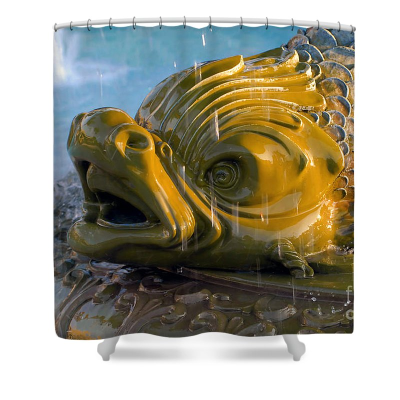 Fish Shower Curtain featuring the photograph Fish Out Of Water by David Lee Thompson