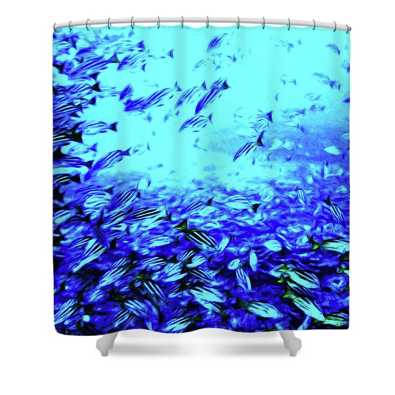 Coral Shower Curtain featuring the digital art Fish Traffic by Joan Minchak