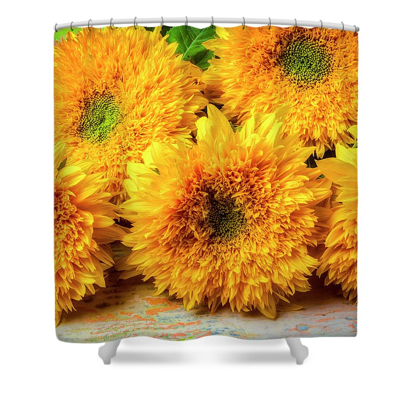 Sunflower Shower Curtain featuring the photograph Five Exotic Sunflowers by Garry Gay