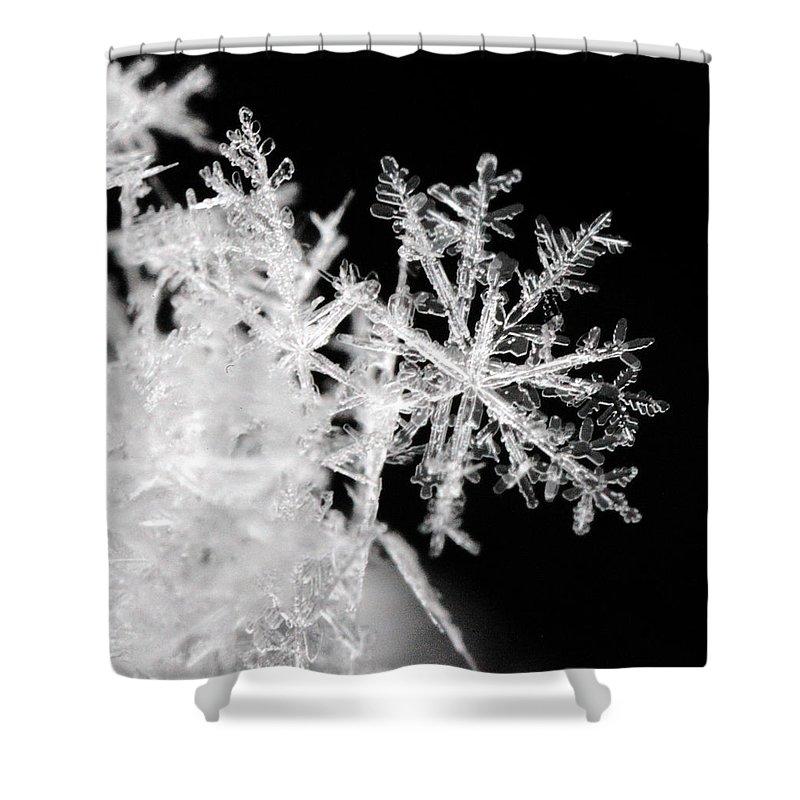 Robert Och Shower Curtain featuring the photograph Flake by Robert Och