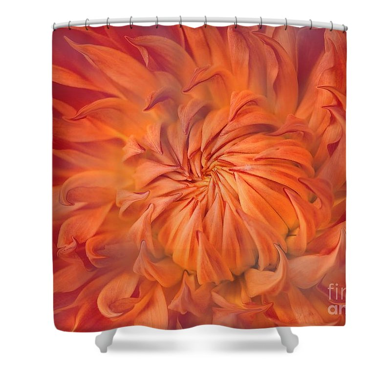 Flower Shower Curtain featuring the photograph Flame by Jacky Gerritsen