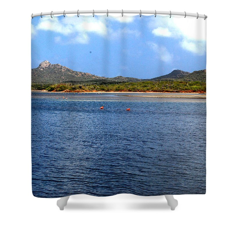 Flamingo Shower Curtain featuring the photograph Flamingo's Home by Gary Wonning
