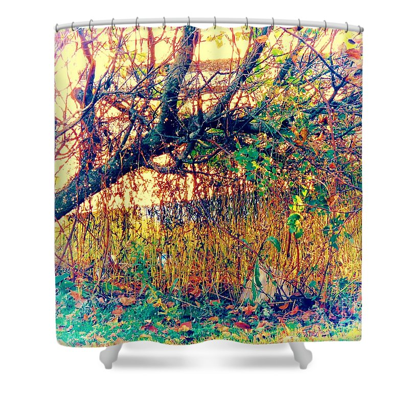 Lake Shower Curtain featuring the pyrography Fletcher Lake 14 by JudithAnne Monahan