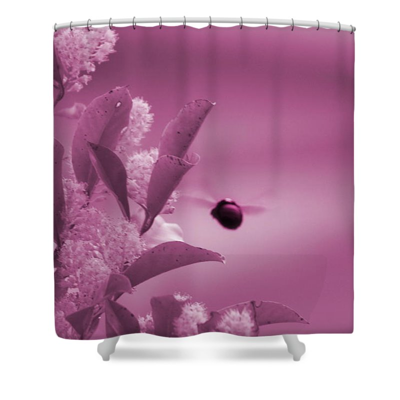 Pastel Pin Shower Curtain featuring the photograph Flight Of Princess Bumble Bee by Colleen Cornelius