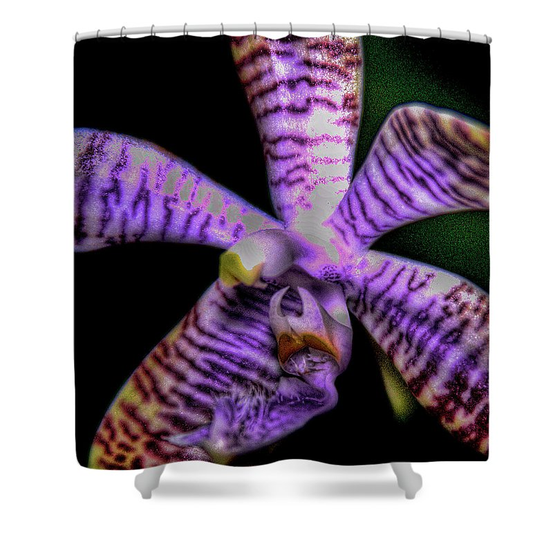 Flower Shower Curtain featuring the photograph Floral 1 by David Patterson