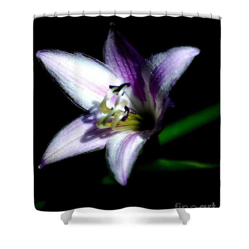 Digital Photograph Shower Curtain featuring the photograph Floral 7-24-09 by David Lane