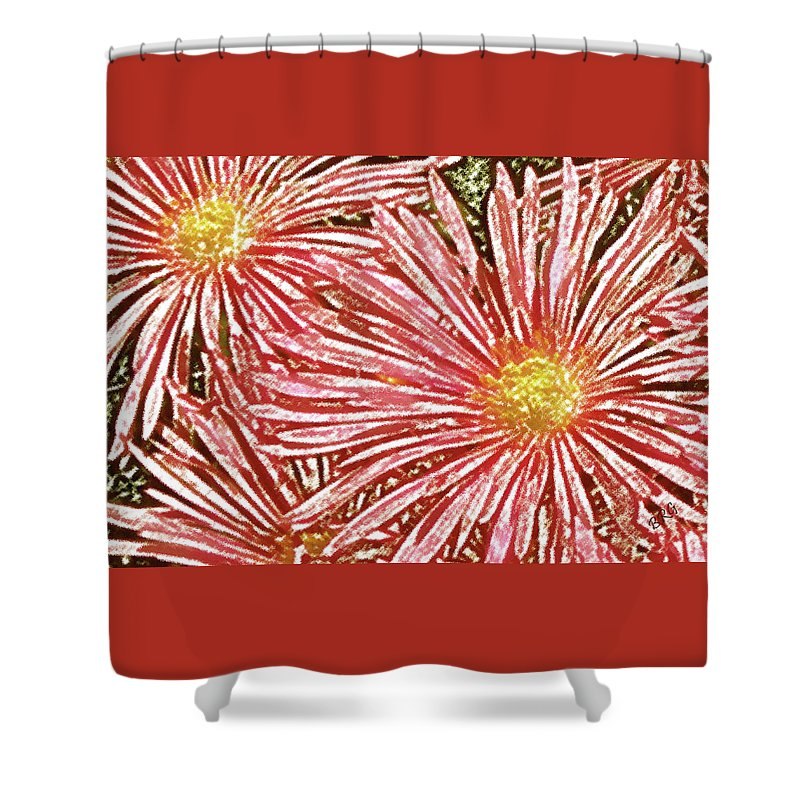 Ice Plant Flowers Shower Curtain featuring the photograph Floral Design No 1 by Ben and Raisa Gertsberg