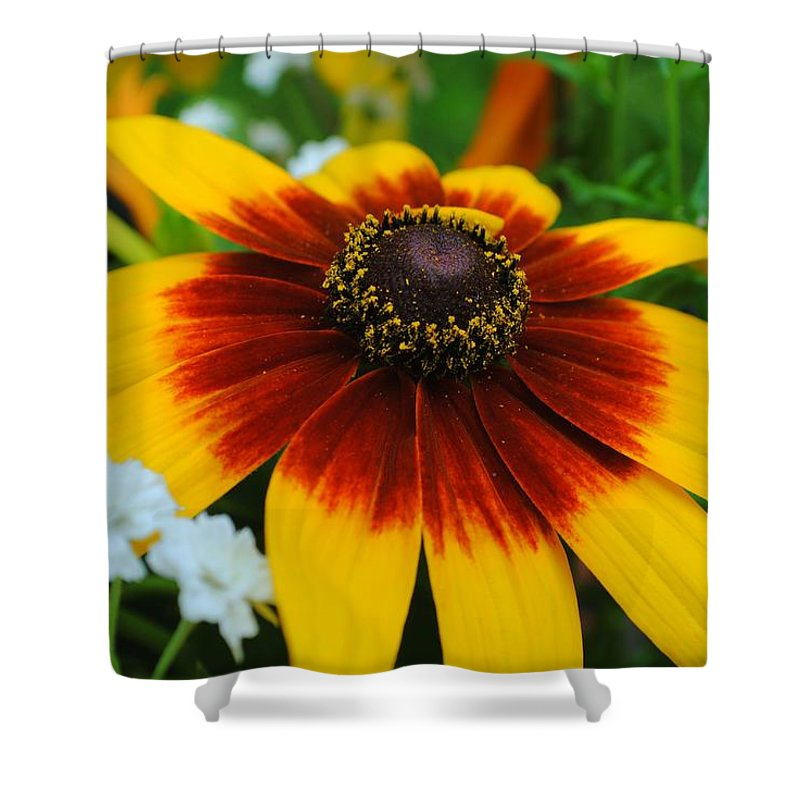 Floral Shower Curtain featuring the photograph Floral Fantasy by Frozen in Time Fine Art Photography