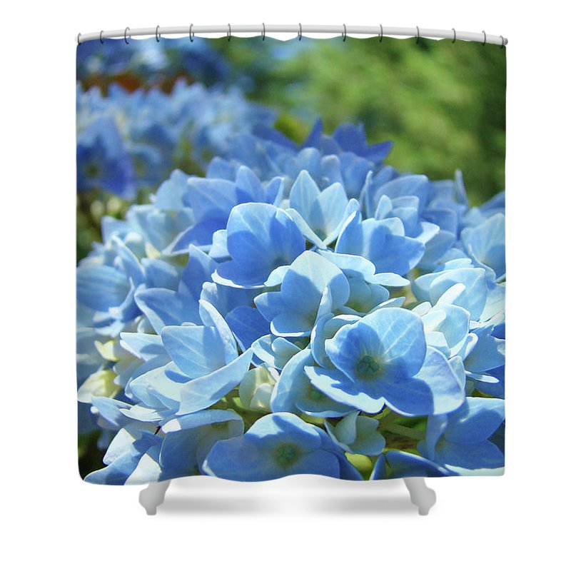 Flowers Shower Curtain featuring the photograph Floral Fine Art Blue Hydrangeas Baslee Troutman by Baslee Troutman