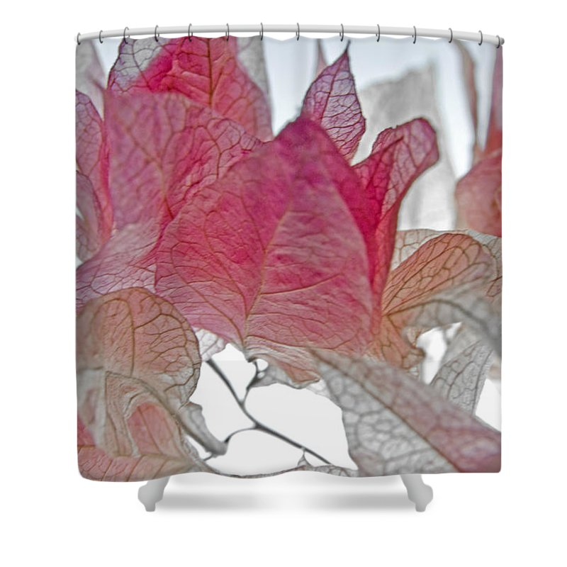 Macro Shower Curtain featuring the photograph Floral Flutter 3 by Jean Booth