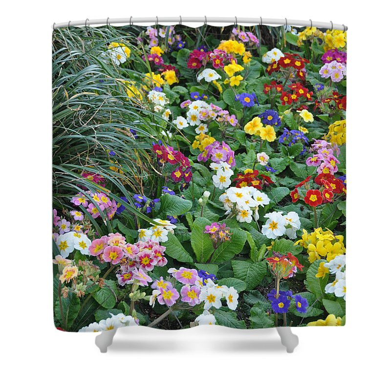 Flower Shower Curtain featuring the photograph Floral Rainbow by Rich Bodane