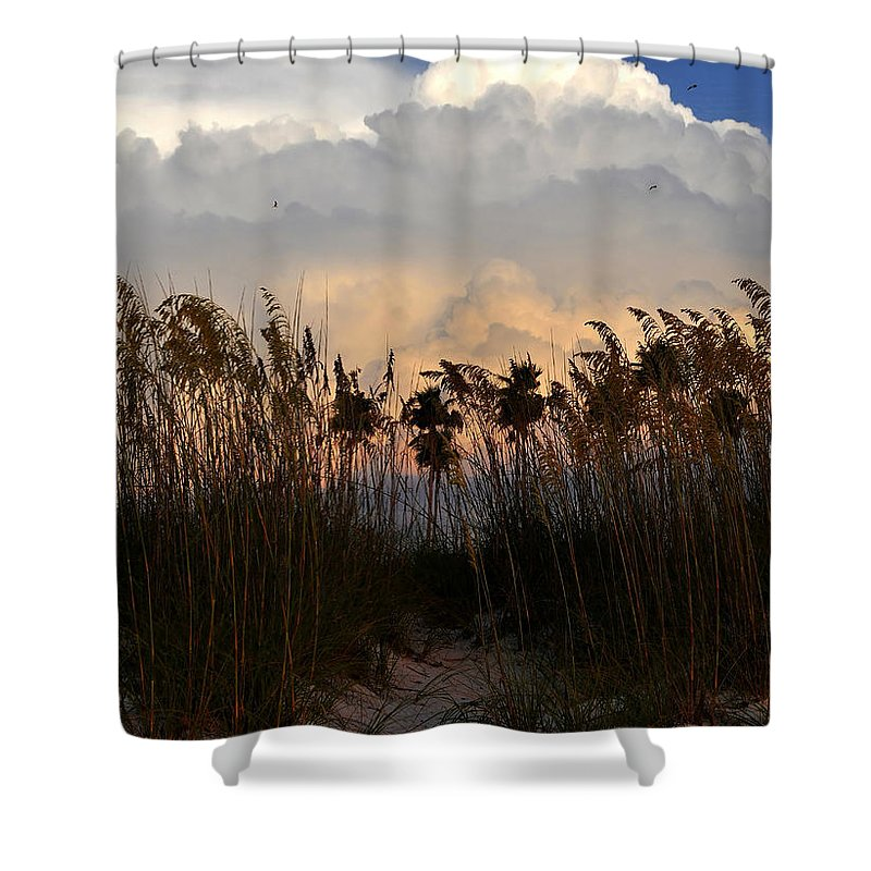 Fine Art Photography Shower Curtain featuring the photograph Florida Dunes by David Lee Thompson