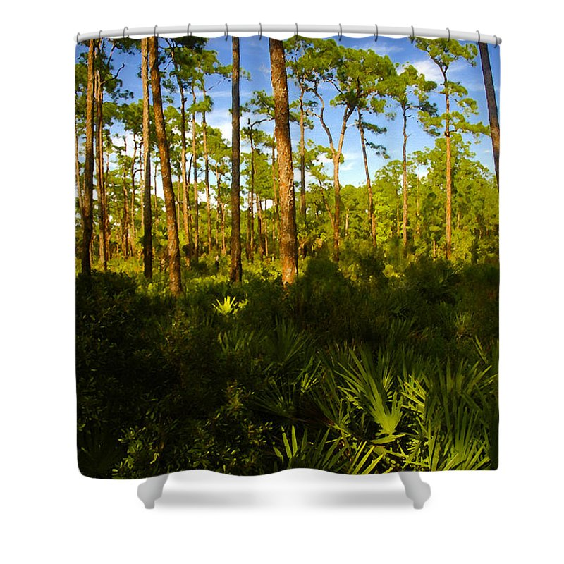 Pine Trees Shower Curtain featuring the painting Florida Pine Forest by David Lee Thompson
