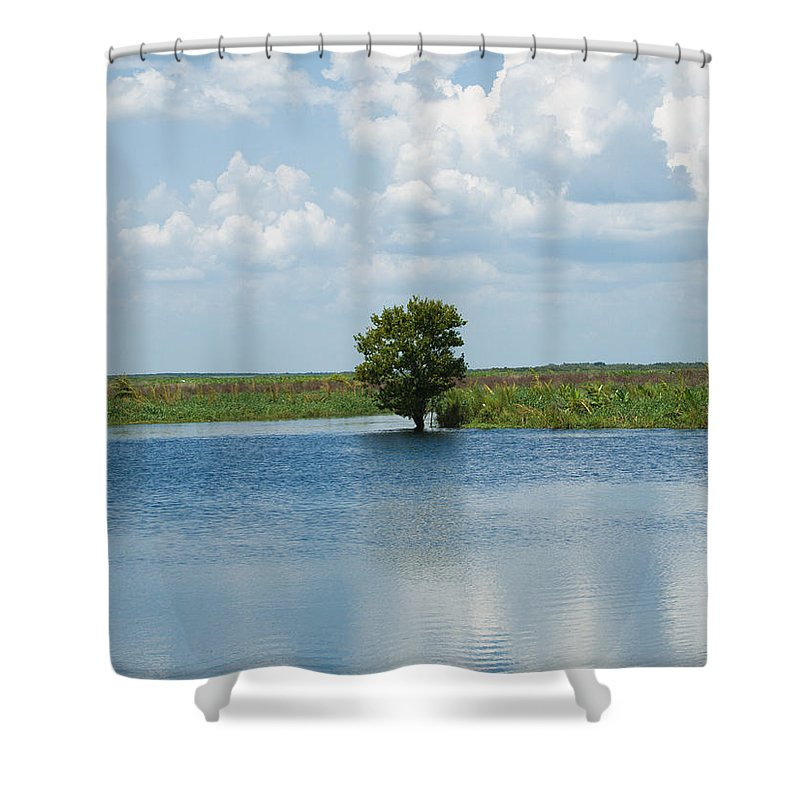 Florida; River; St; Johns; Saint; John; Flow; Flows; North; South Direction; Flowing; Current; Backw Shower Curtain featuring the photograph Florida River Backwater by Allan Hughes