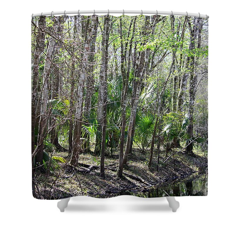 Florida Landscape Shower Curtain featuring the photograph Florida Riverbank by Carol Groenen