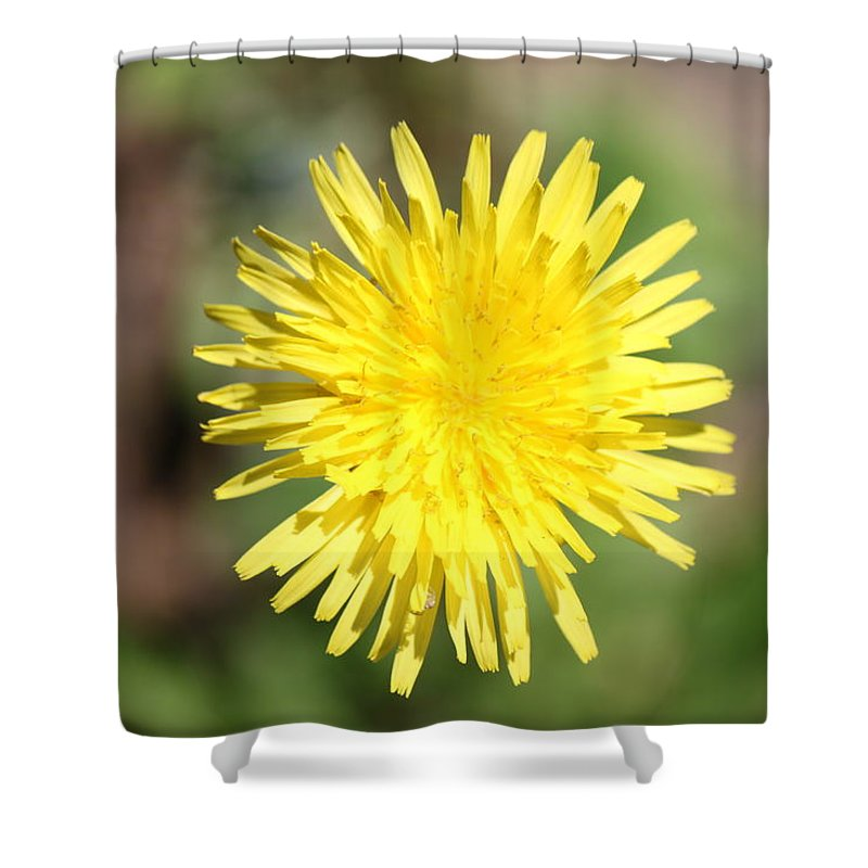 Flower Shower Curtain featuring the photograph Flower by Didier Belrose