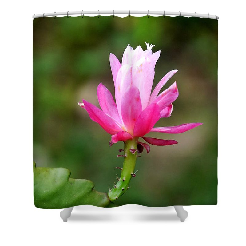 #flower #beautiful #nature Shower Curtain featuring the photograph Flower Edition by Bernd Hau