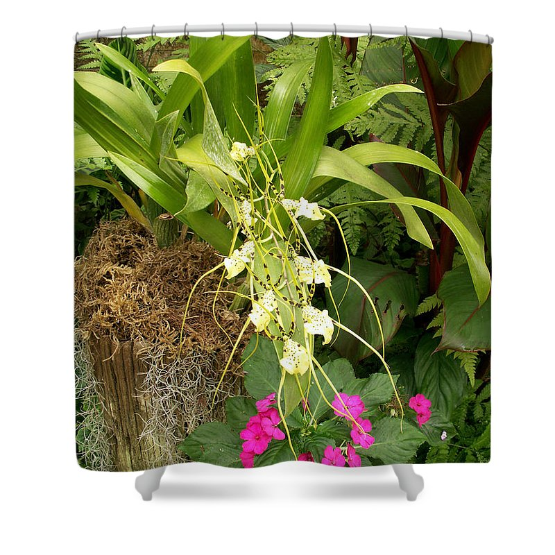 Flower Shower Curtain featuring the photograph Flower Mix by Amy Fose