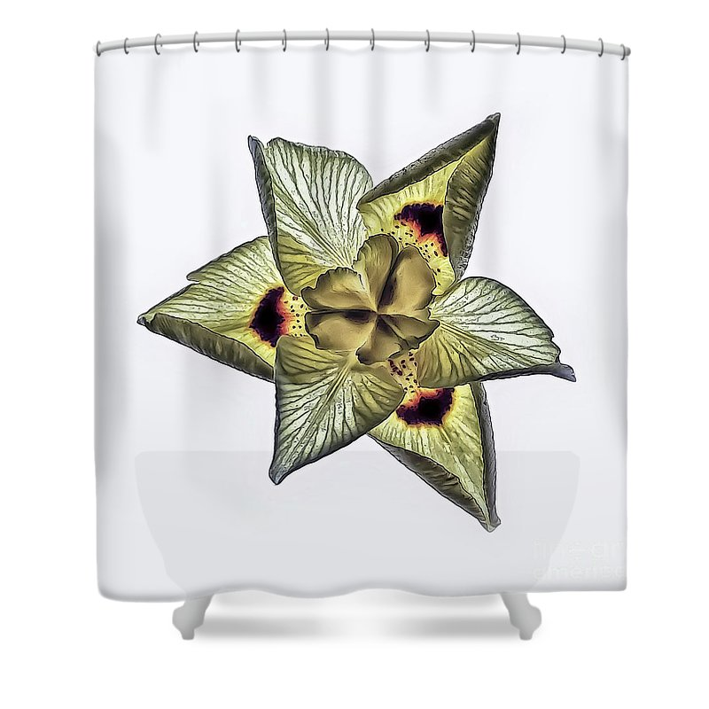 Flower Shower Curtain featuring the photograph Flower Of Triangles by Walt Foegelle