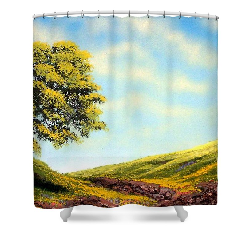 Wildflowers Shower Curtain featuring the painting Flowered Fields by Frank Wilson