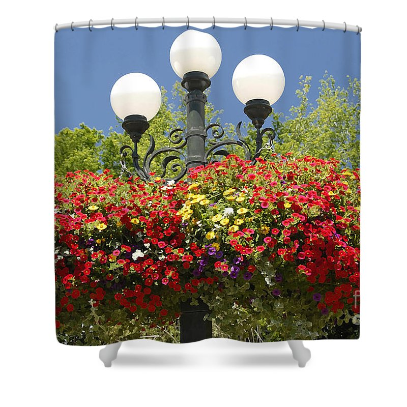 Flowers Shower Curtain featuring the photograph Flowered Lamppost by David Lee Thompson