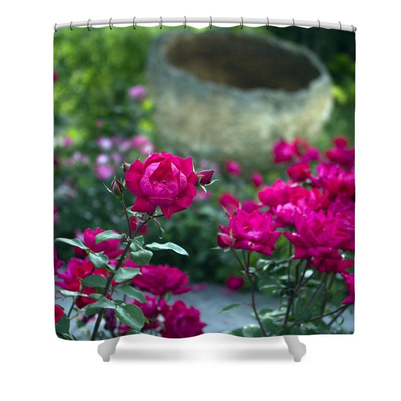 Flowers Shower Curtain featuring the photograph Flowering Landscape by Scott Wyatt