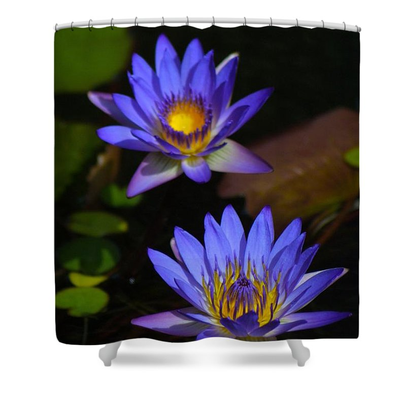 Nature Shower Curtain featuring the photograph Flowers 2 by Lisa Spero
