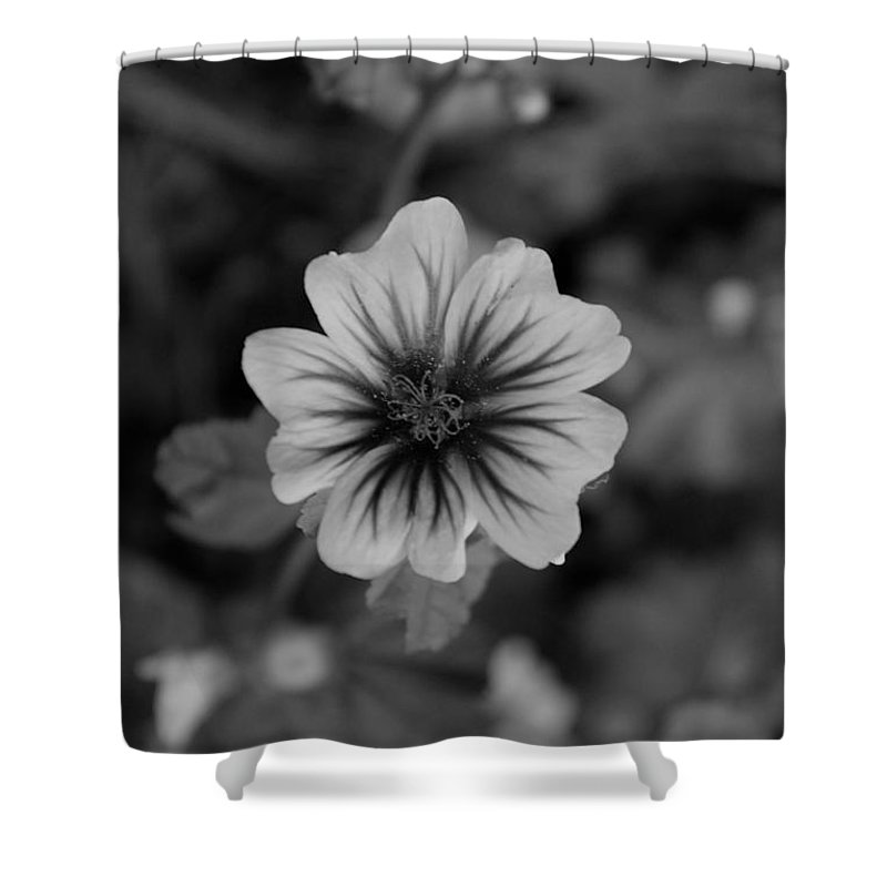 Shower Curtain featuring the photograph Flowers 3 by John Bichler