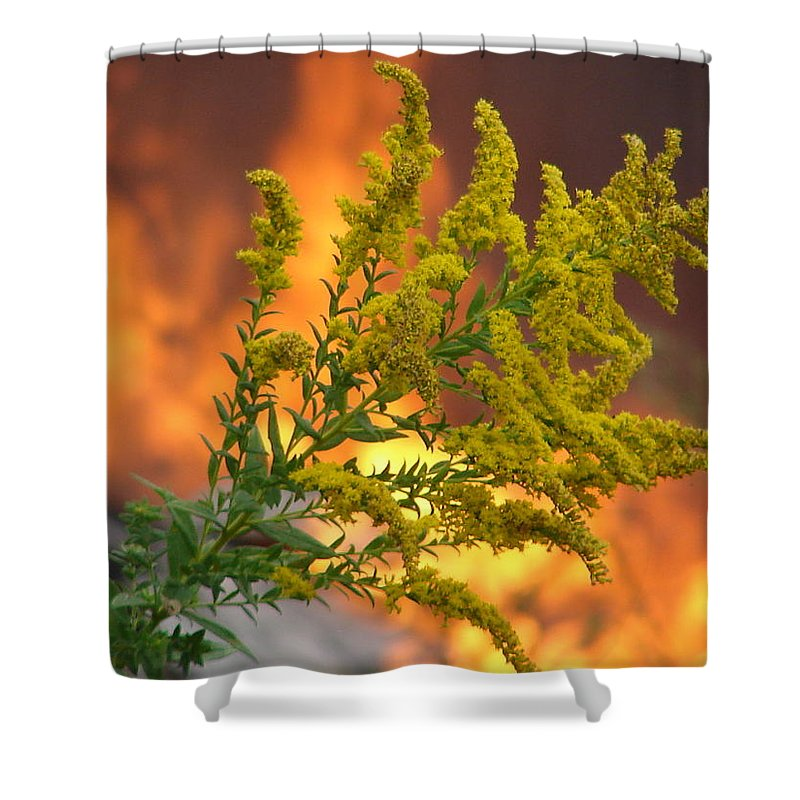 Flower Fire Flame Shower Curtain featuring the photograph Flowers And Flames by Luciana Seymour