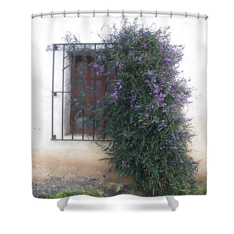 Flowers Shower Curtain featuring the photograph Flowers by Jeanie Watson