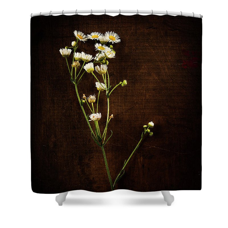 Flowers Shower Curtain featuring the photograph Flowers On Wood by David Jilek