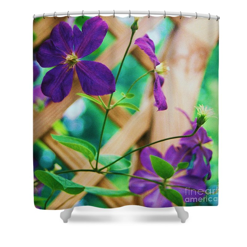 Floral Shower Curtain featuring the painting Flowers Purple by Eric Schiabor