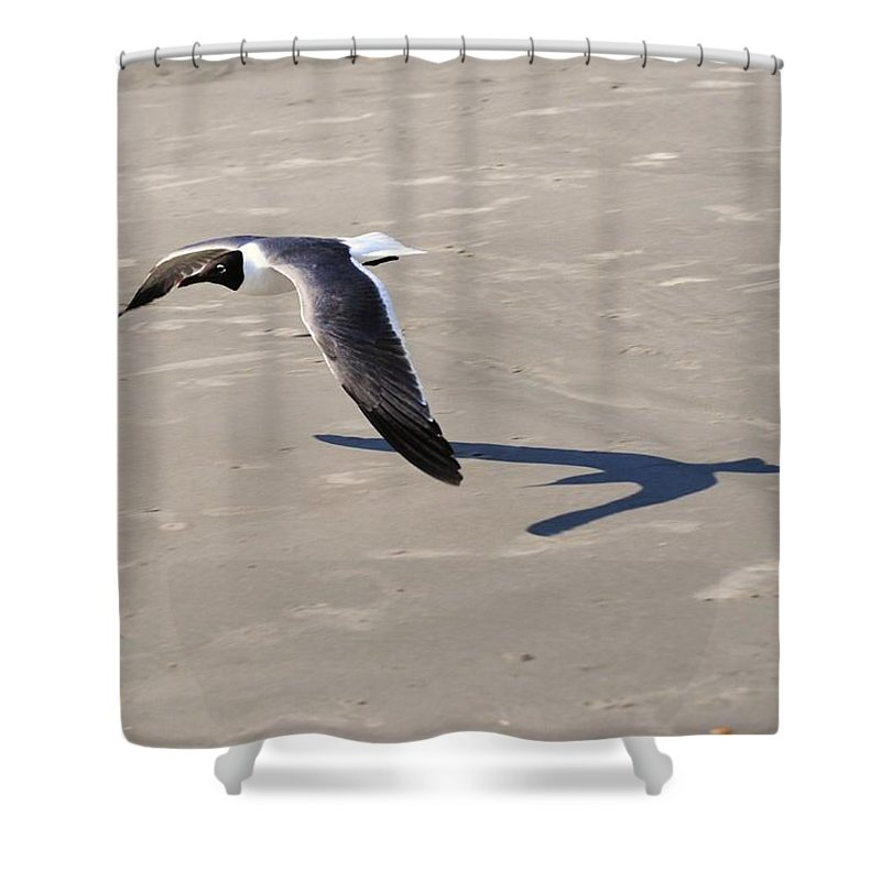 Eric Liller Shower Curtain featuring the photograph Flying Low by Eric Liller