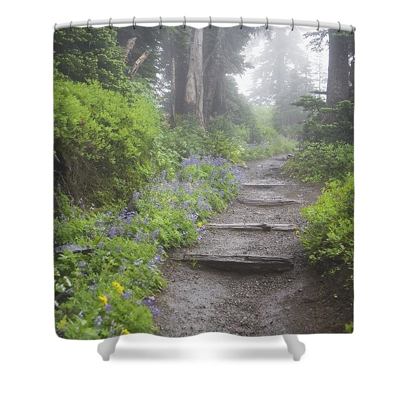 Fog Shower Curtain featuring the photograph Foggy Forest Path by Craig Tuttle