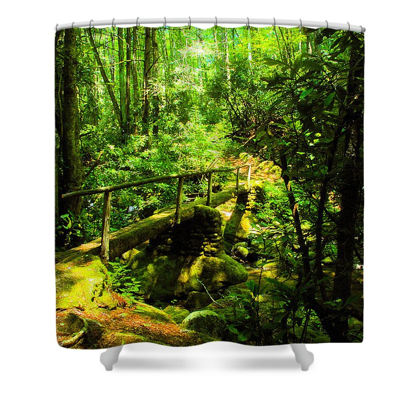 Art Shower Curtain featuring the painting Foot Bridge by David Lee Thompson