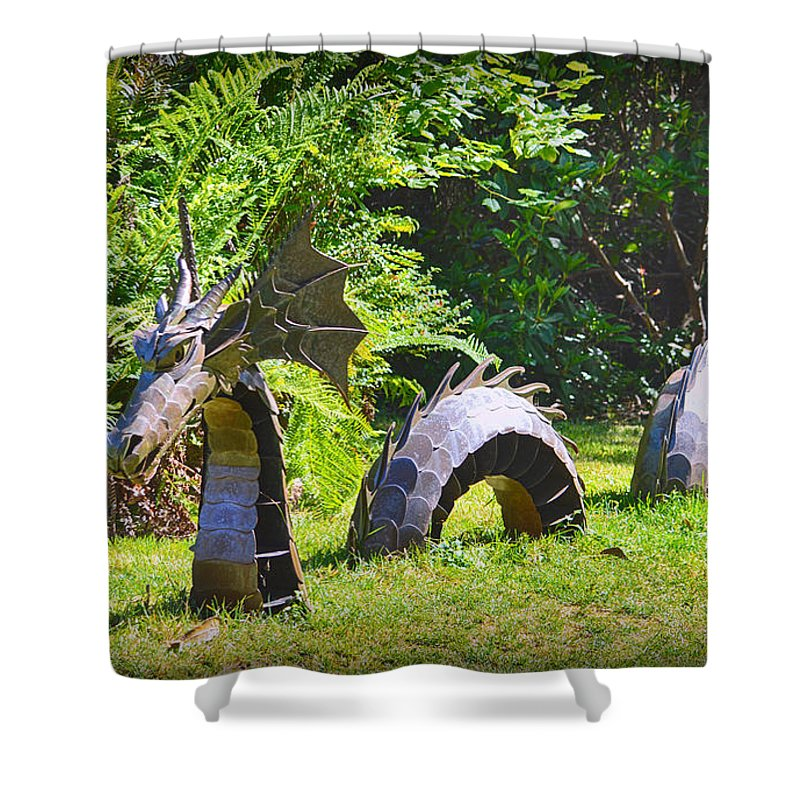 Sculpture Shower Curtain featuring the photograph Forest Dragon by AJ Schibig