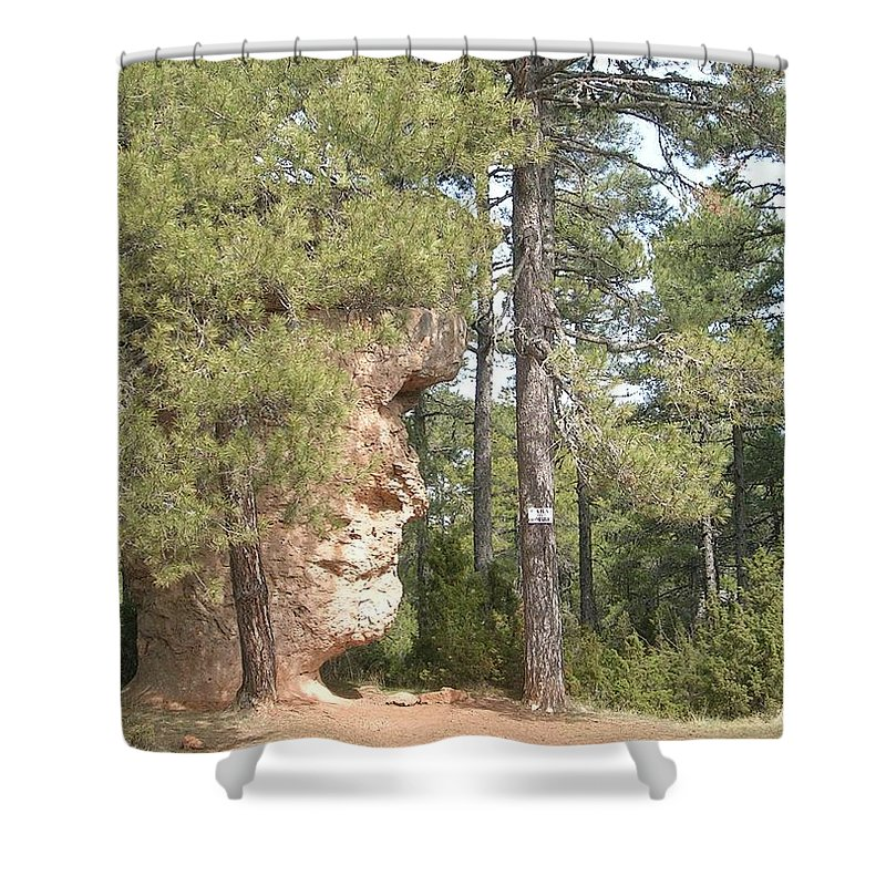Landscape Shower Curtain featuring the photograph Forest Face by Valerie Ornstein