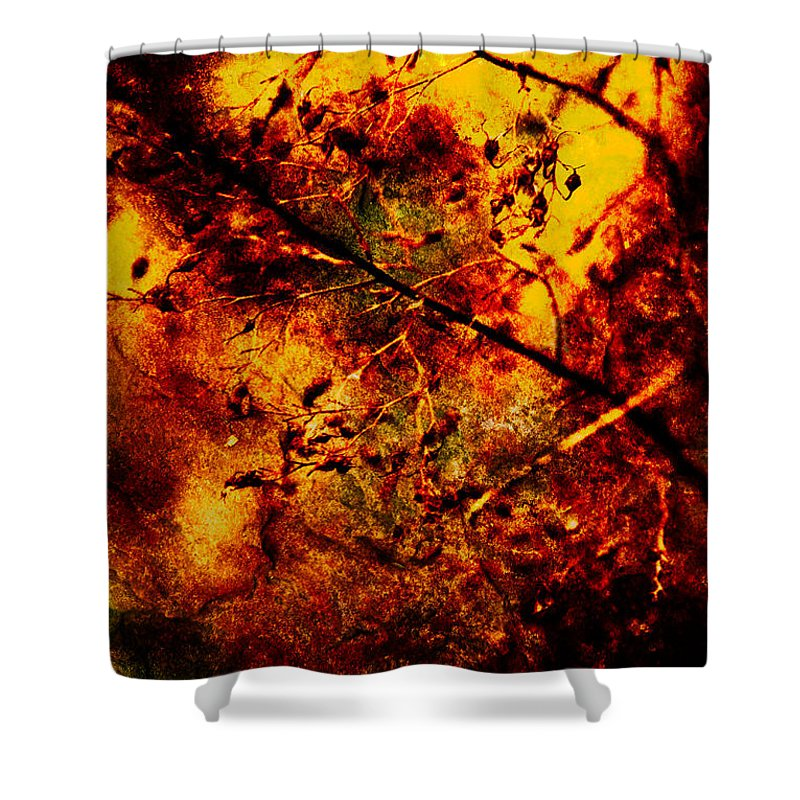 Fire Shower Curtain featuring the photograph Forest Fire by Onyonet Photo Studios