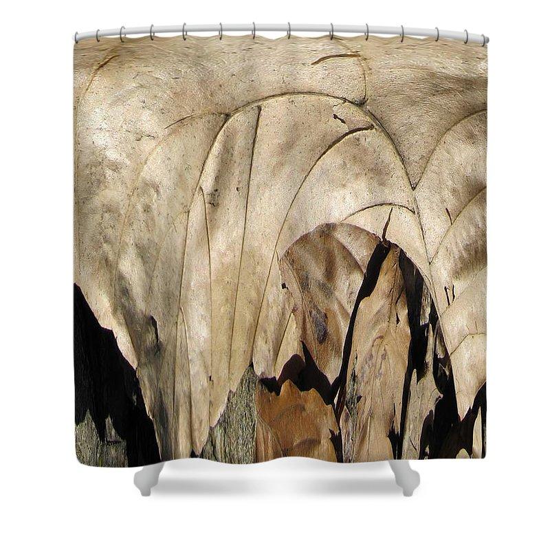 Forest Shower Curtain featuring the digital art Forest Floor by Tim Allen