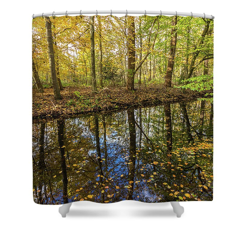 City Shower Curtain featuring the photograph Forest Leaf Reflection by Andrew Balcombe