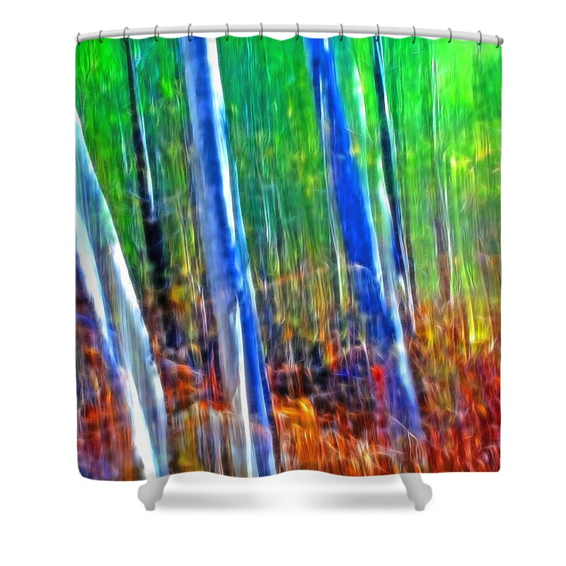 Forest Shower Curtain featuring the photograph Forest Magic by Bill Morgenstern