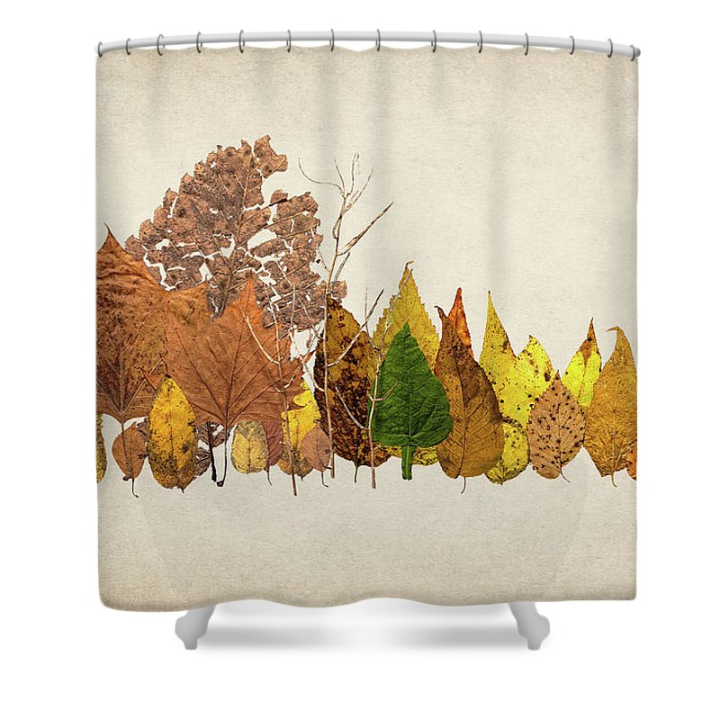 Forest Shower Curtain featuring the photograph Forest Of Autumn Leaves I by Tom Mc Nemar
