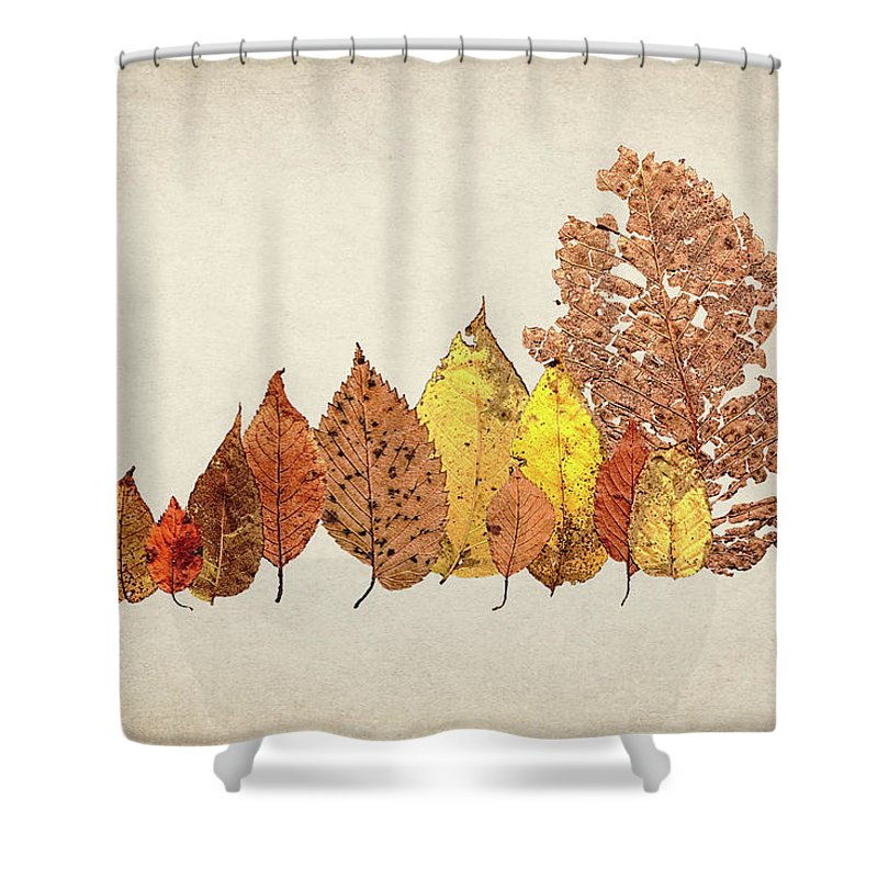 Forest Of Autumn Leaves II Shower Curtain For Sale By Tom Mc Nemar