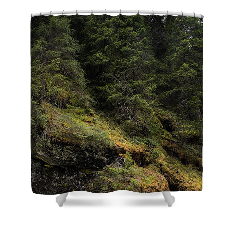 Trees Shower Curtain featuring the photograph Forest River by Mike Agentis