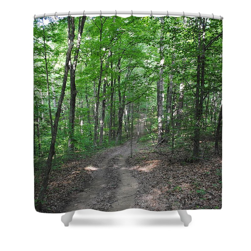 Forest Shower Curtain featuring the photograph Forest Road by Jost Houk