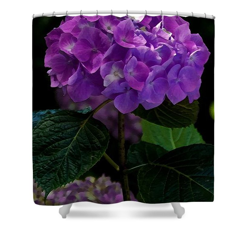 Floral Shower Curtain featuring the mixed media Forever Violet by Georgiana Romanovna